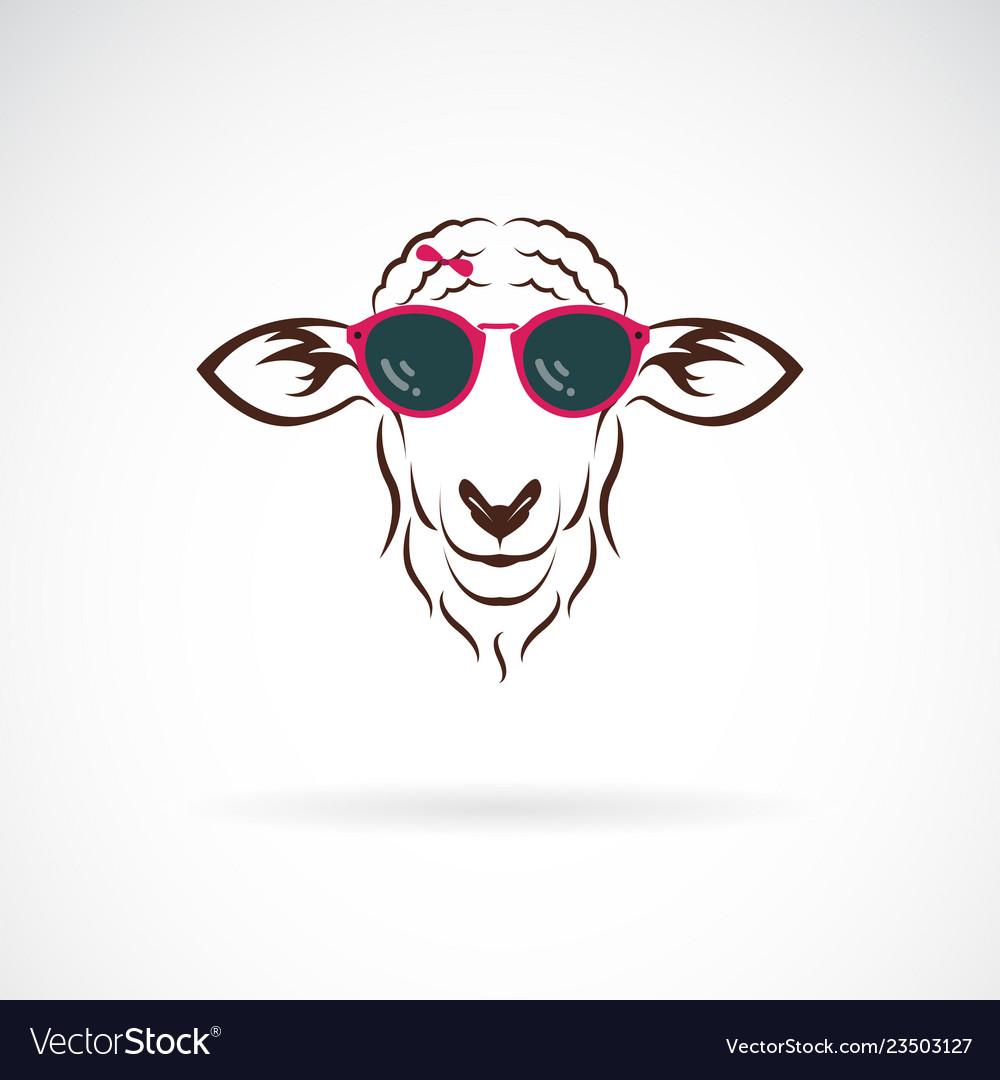 Sheep wearing sunglasses on white background