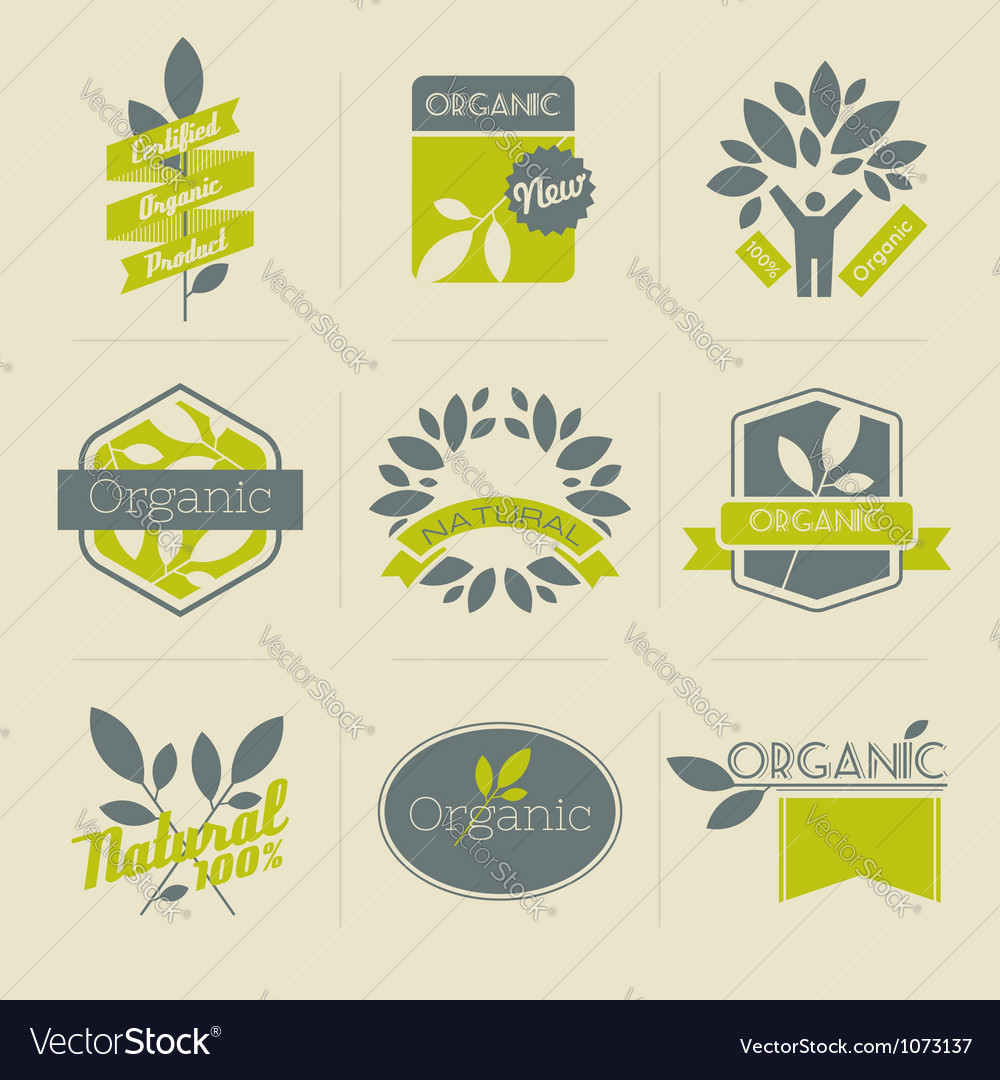 Organic retro labels vector image