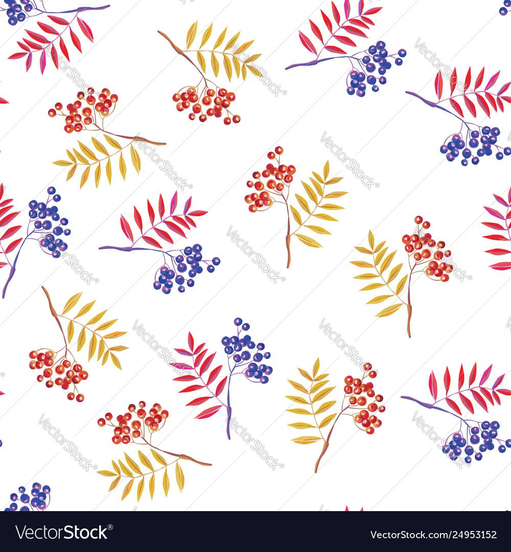 Rowan branches and rowanberry seamless white