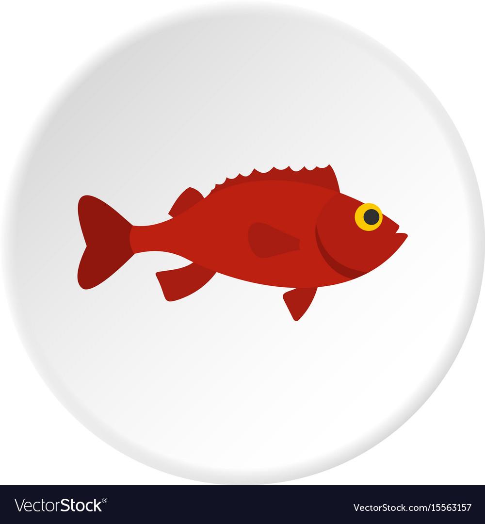 Red betta fish icon circle vector image