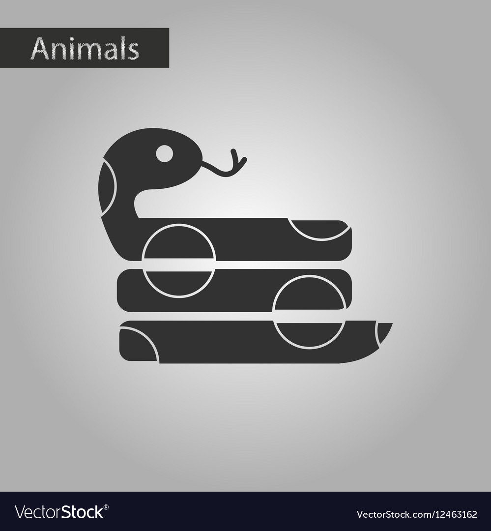 anaconda snake icons set 9