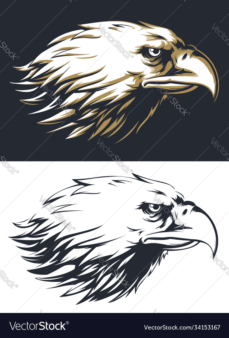 Silhouette eagle head sideview isolated