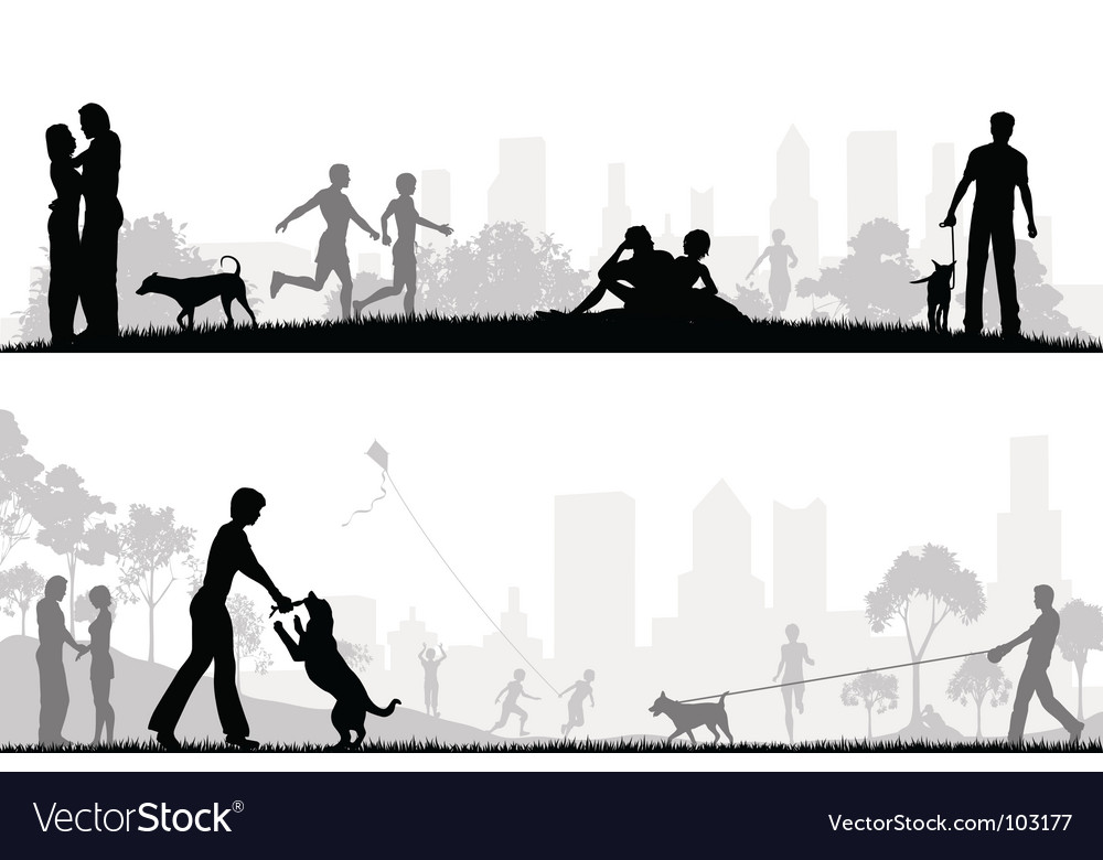 City park designs vector image