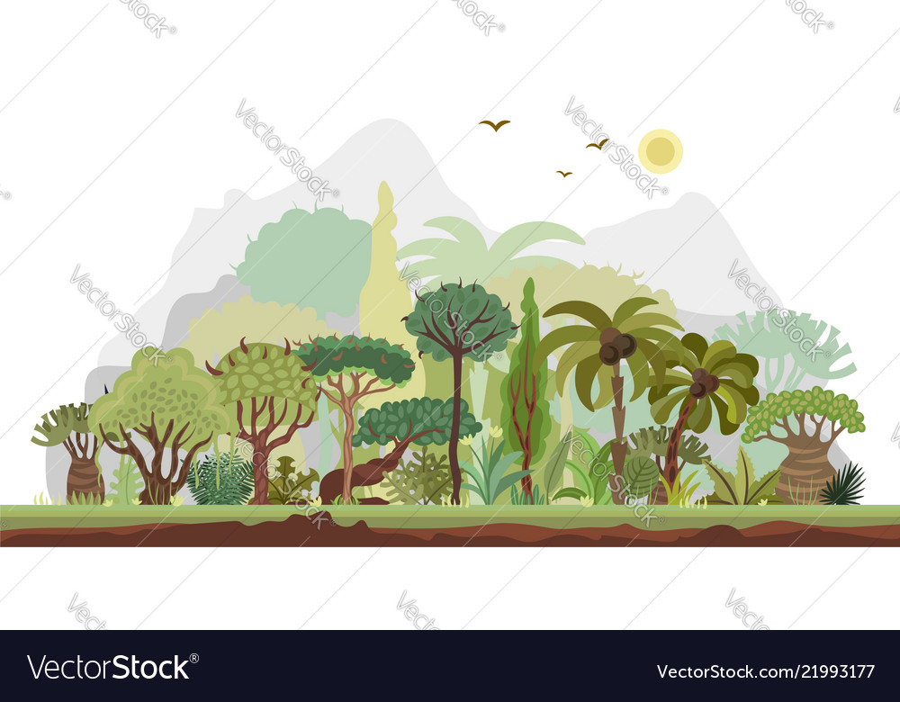 Horizontal tropical rainforest