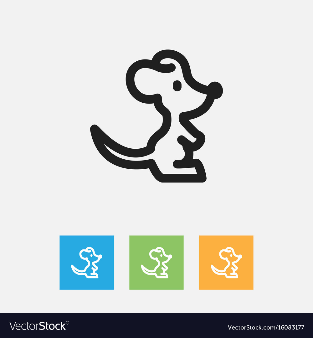 Of zoo symbol on rat outline vector image