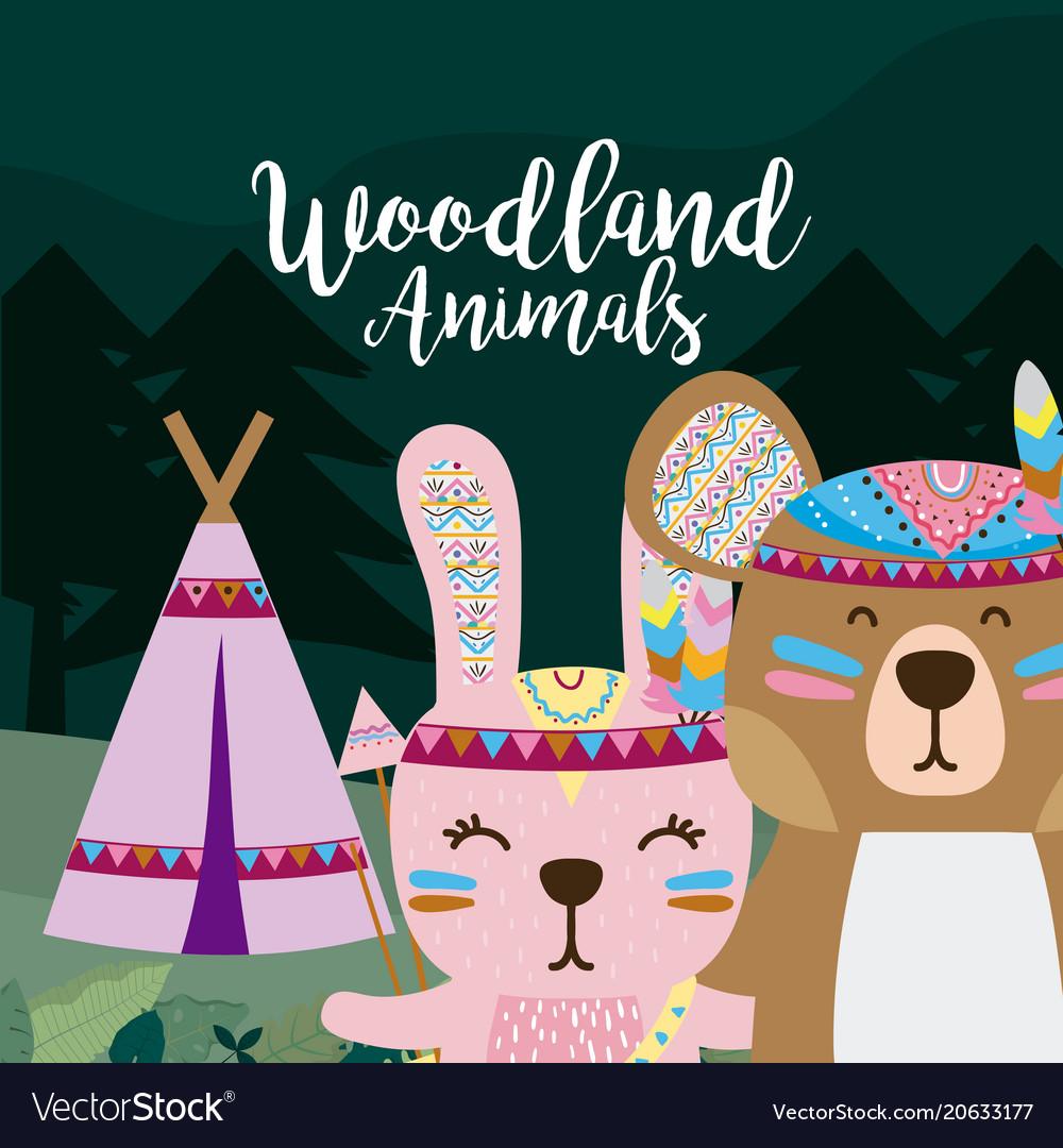 Rabbit and bear wooland animals cartoon
