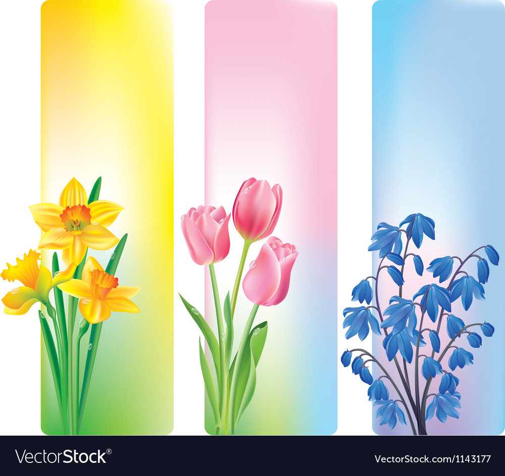 Spring Flowers Banners Royalty Free Vector Image