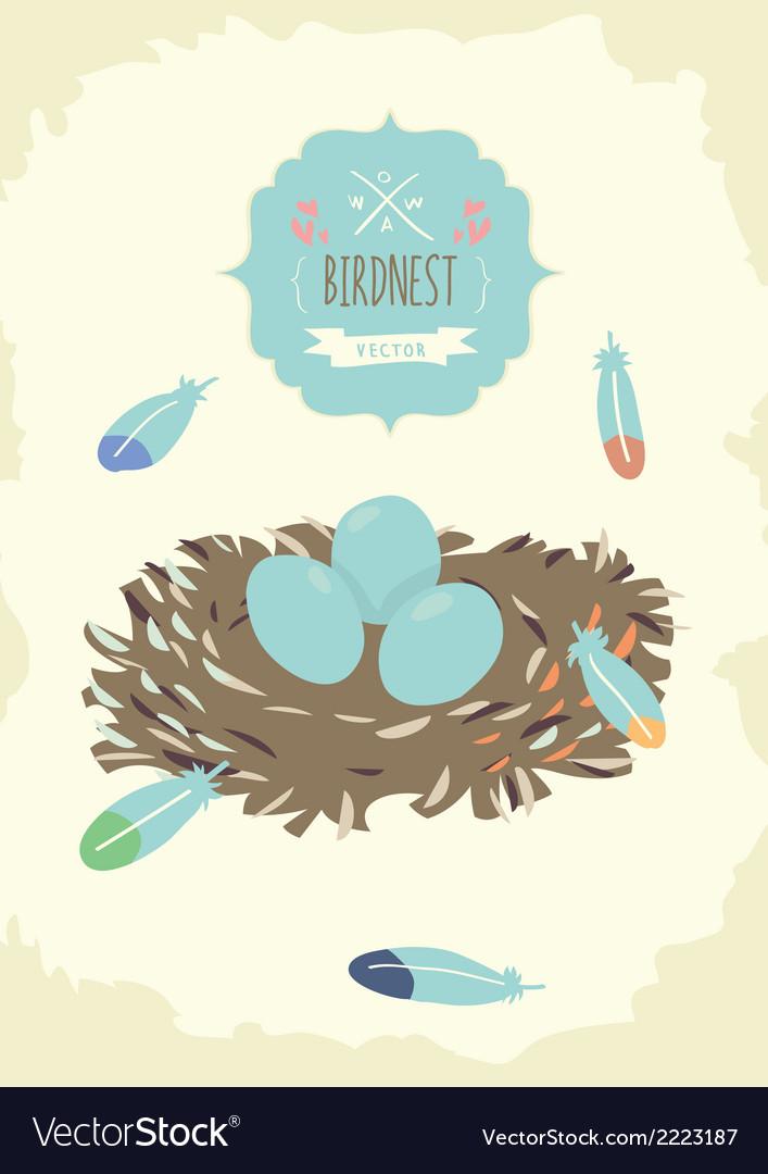 Bird Nest Design