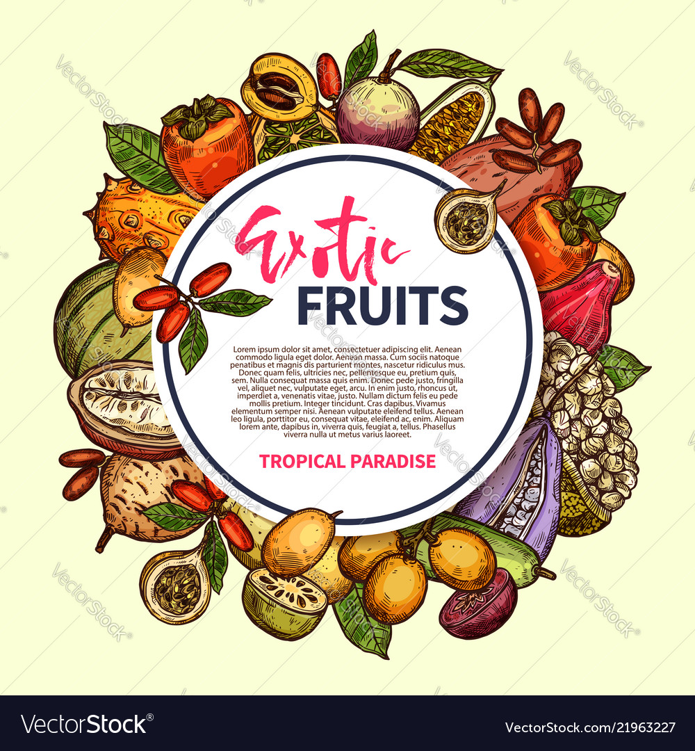 Exotic fruits and tropical berries frame