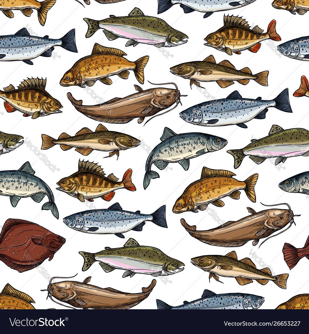 Sea fish ocean seafood marine animals pattern