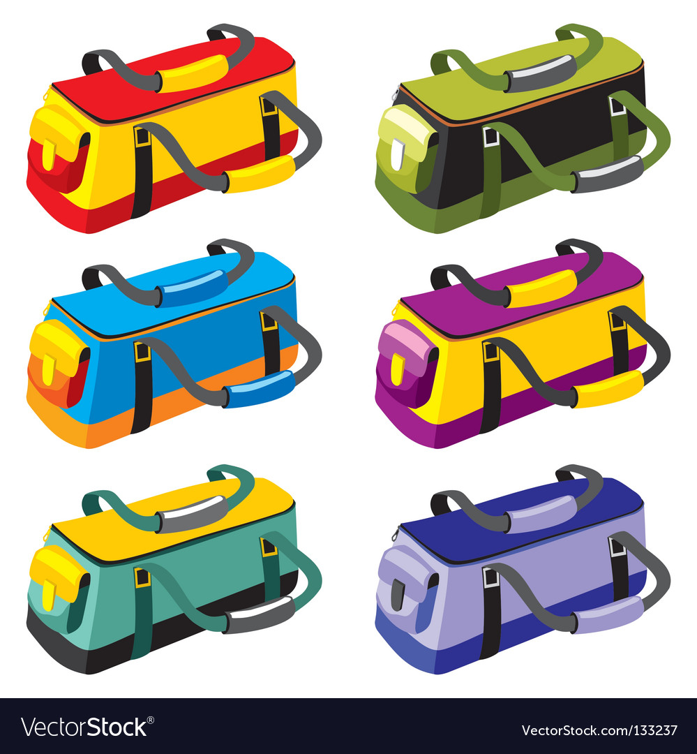 Sports bags vector image