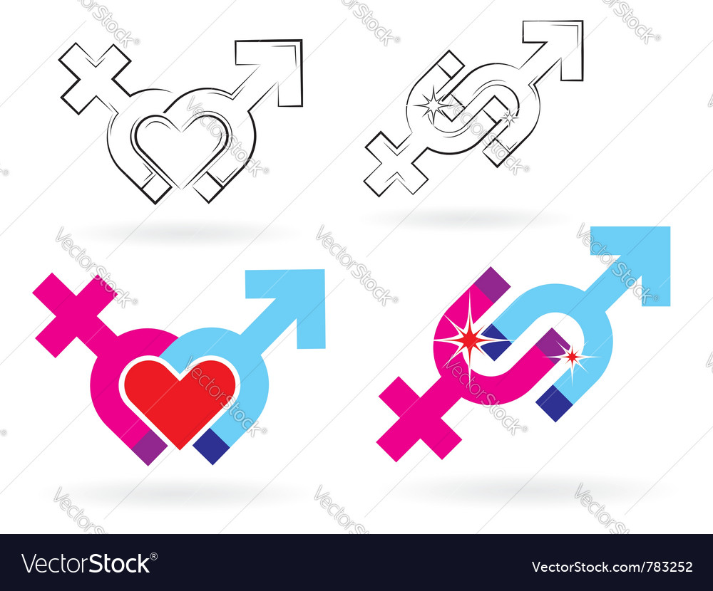 Male and female magnetism vector image