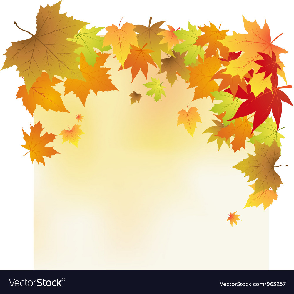 autumn leaves background royalty free vector image