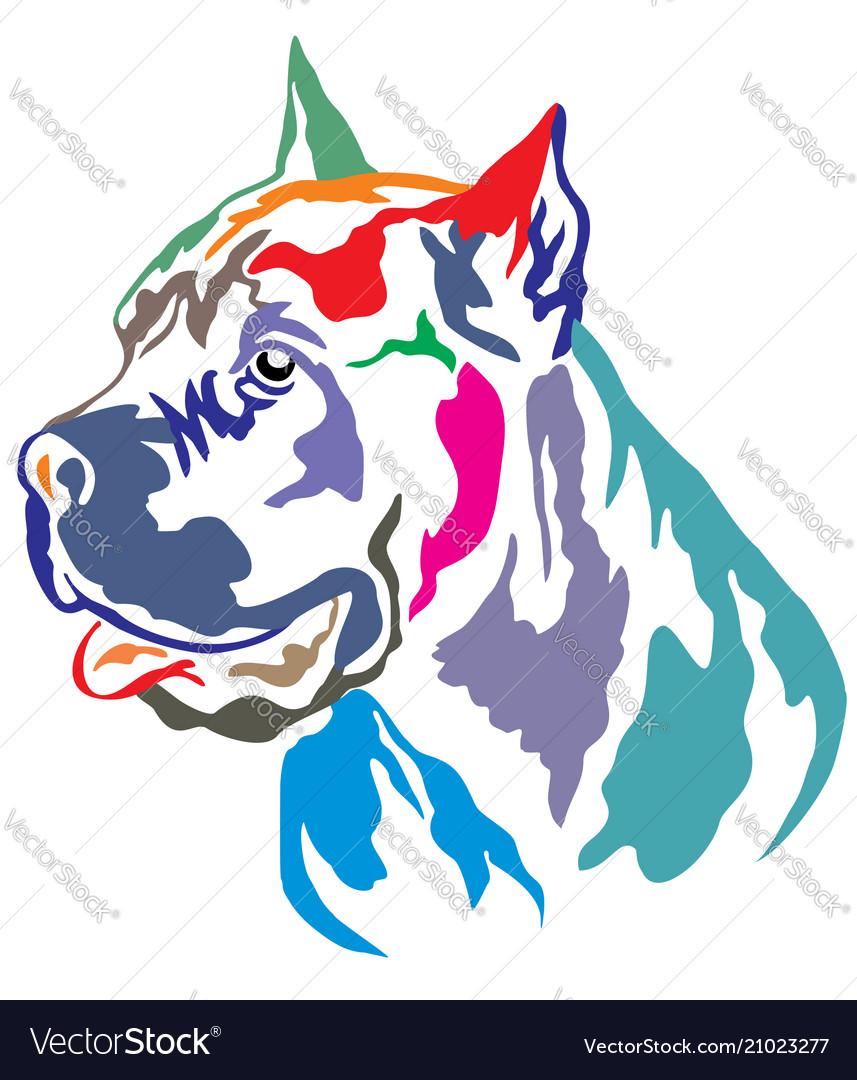Colorful Decorative Portrait Of Cane Corso Vector Image