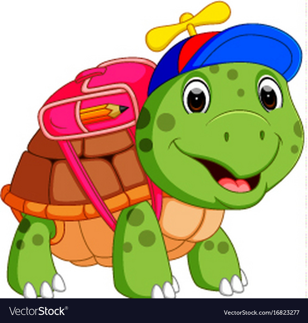 Image result for turtle school