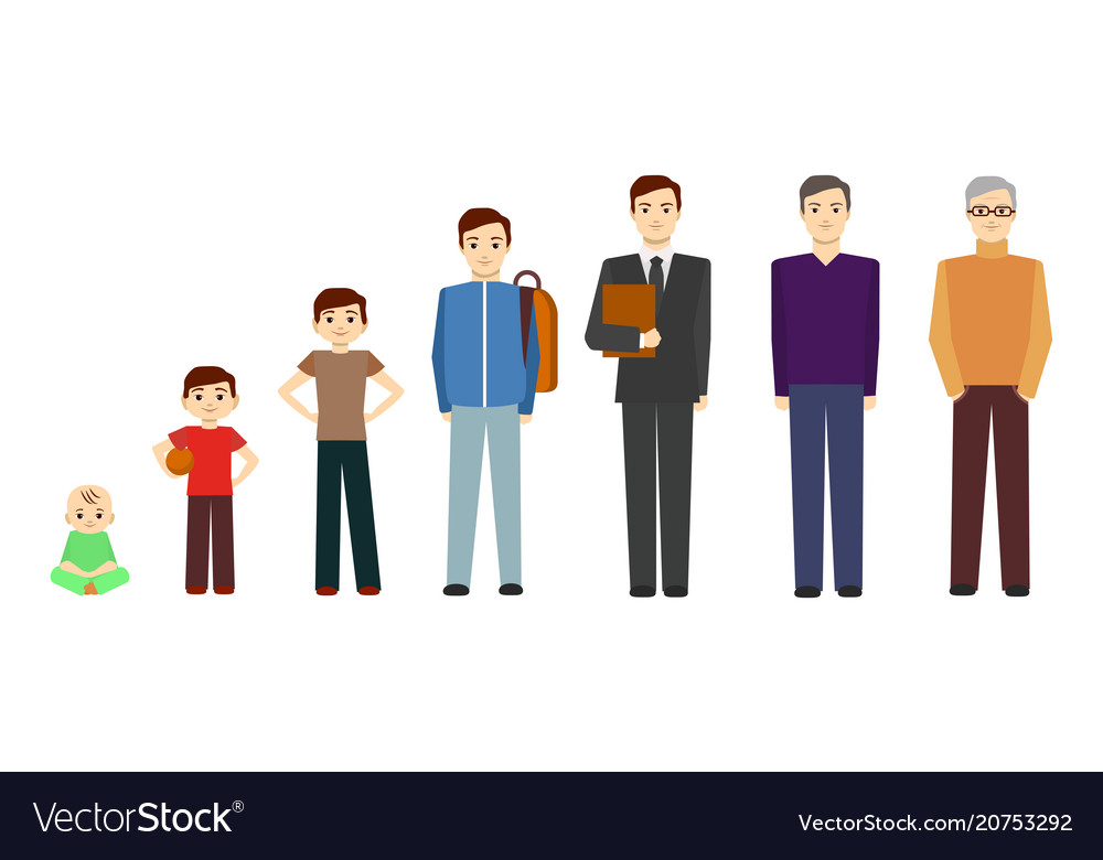 Cartoon stages of growth character man vector image