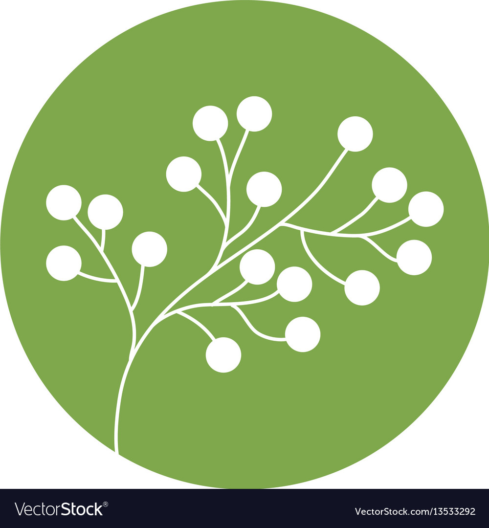 Flower spring branch natural icon vector image