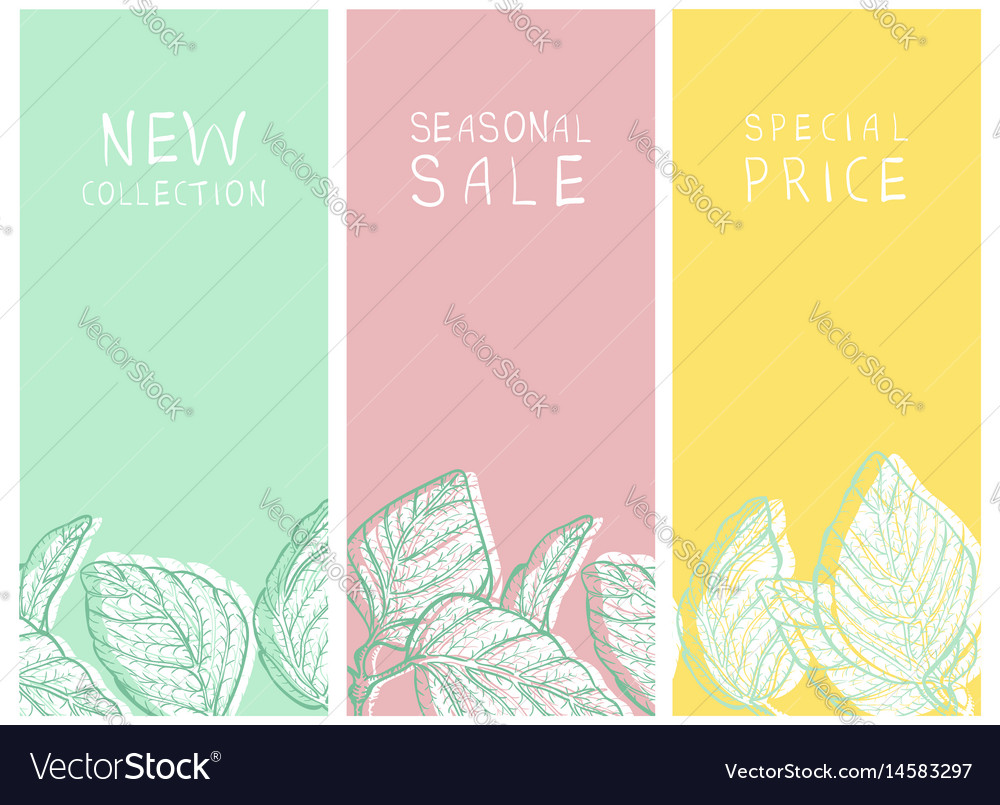 Shopping sale and new arrival banners or tags set