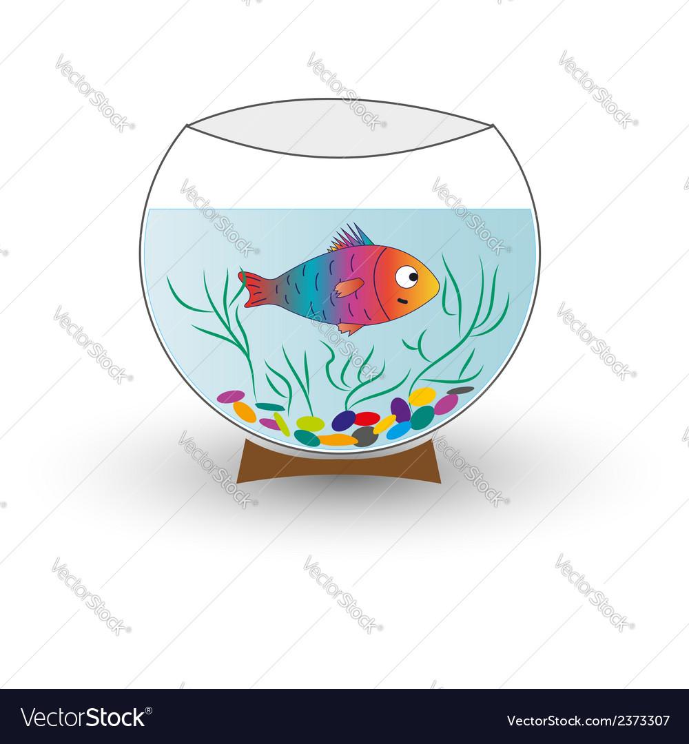 Aquarium with fish isolated