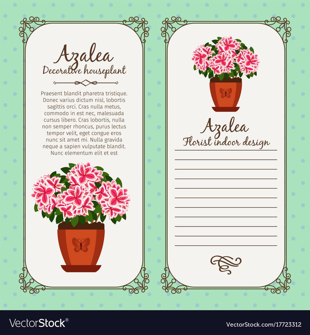 Vintage label with potted flower azalea