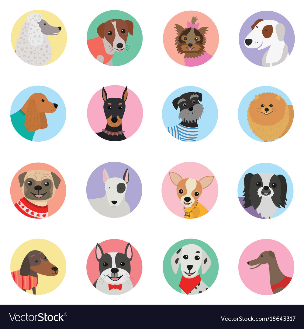 Seamless background with dogs icon flat