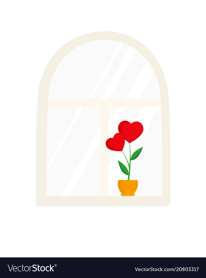 Window and flower in pot