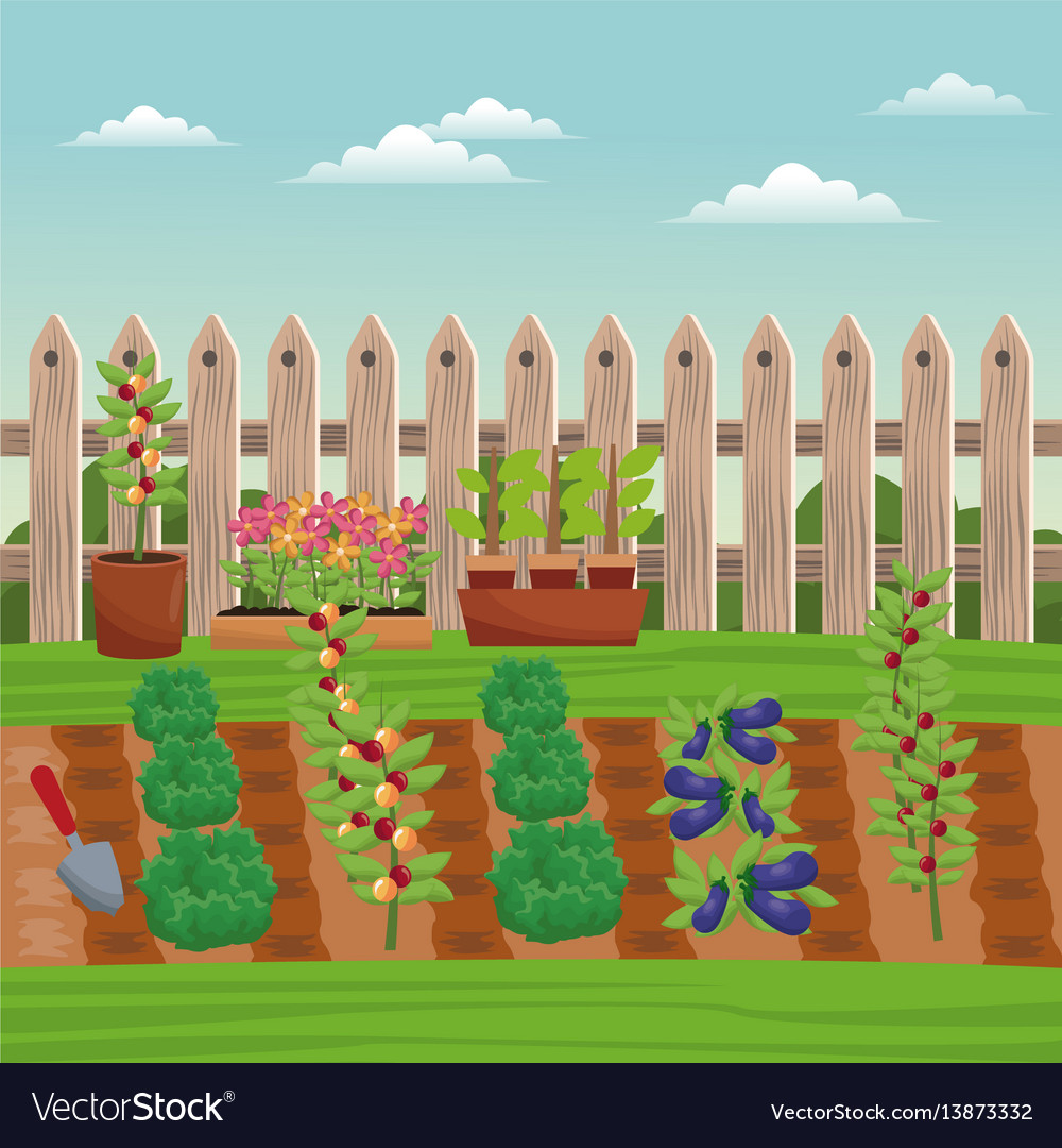 Vegetable field farm fence vector image