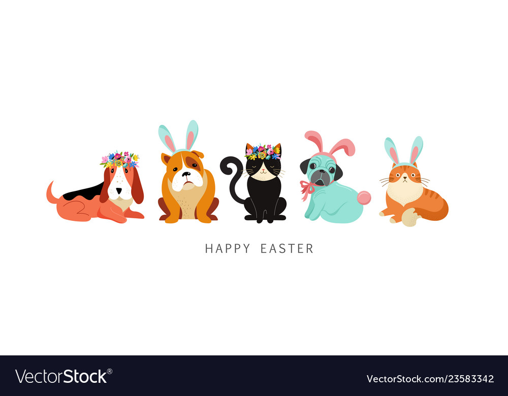 Happy easter card dogs and cats wearing bunny