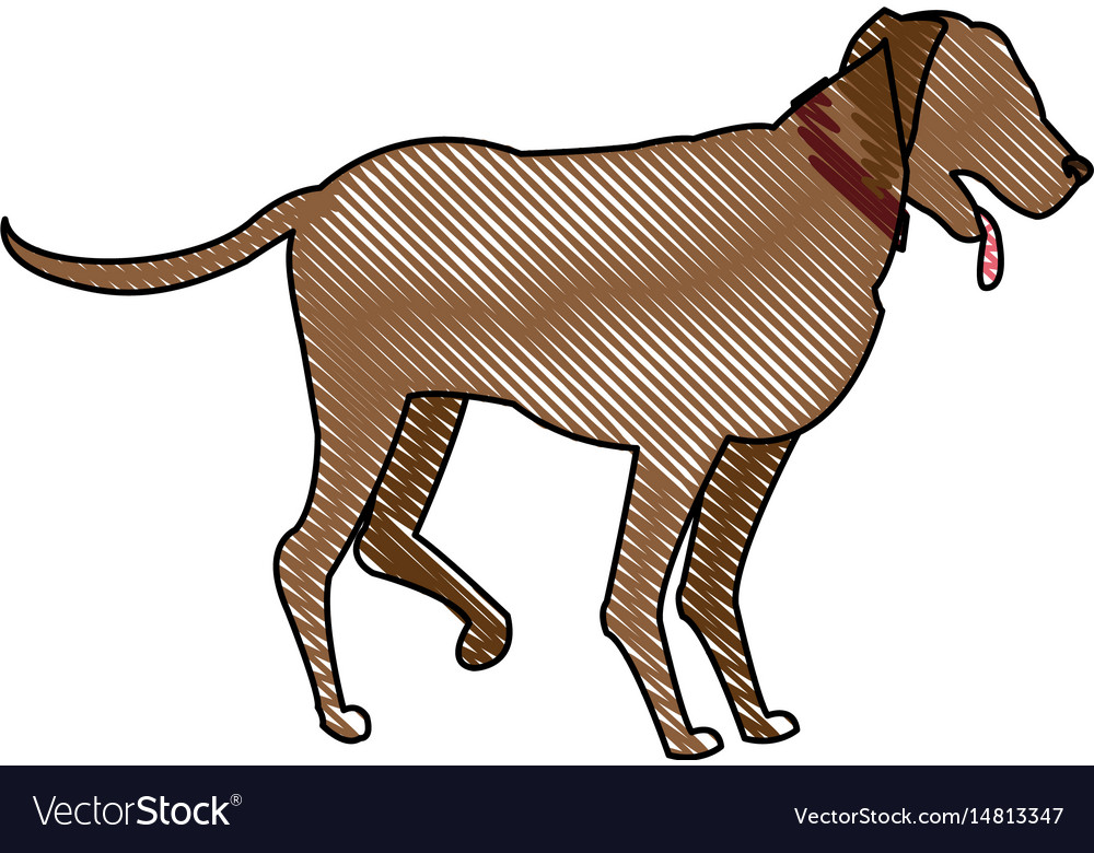Drawing cartoon dog walking pet animal