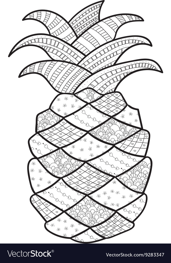 - Pineapple Adult Coloring Page Royalty Free Vector Image
