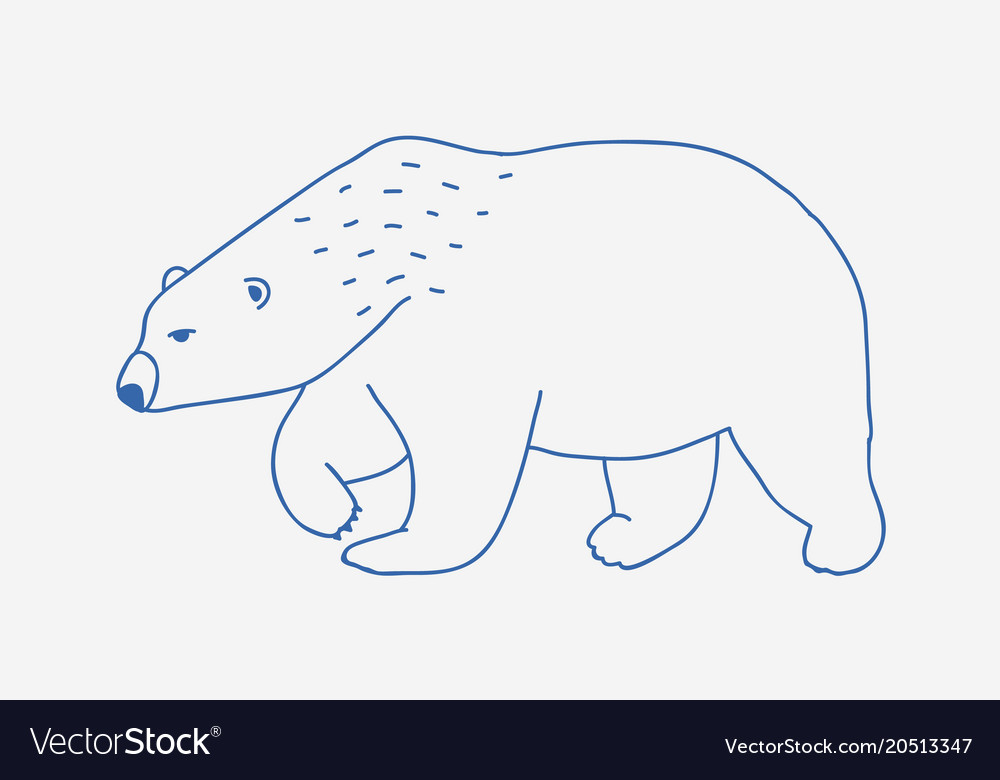 Walking Or Wandering Polar Bear Hand Drawn With