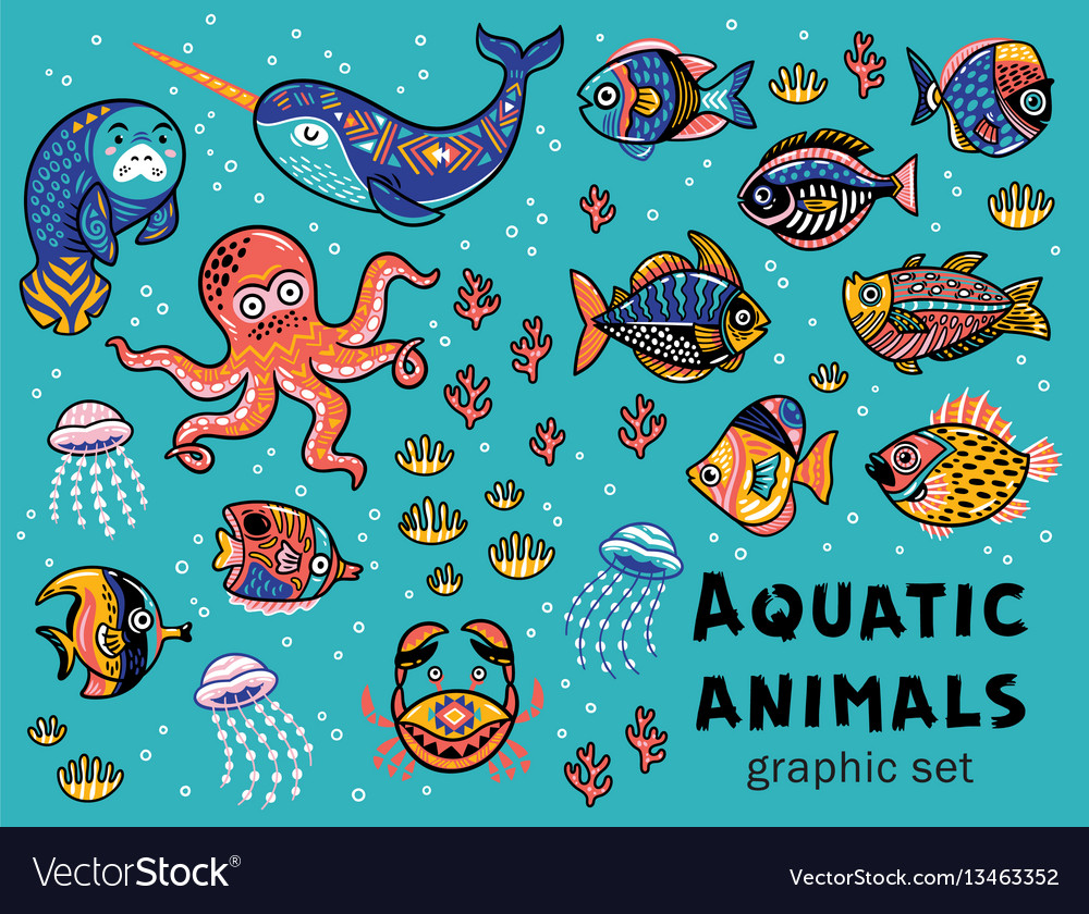 aquatic animals collection royalty free vector image