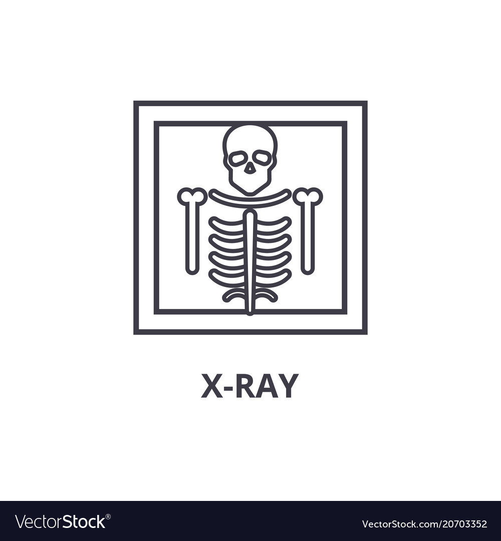 X ray thin line icon sign symbol