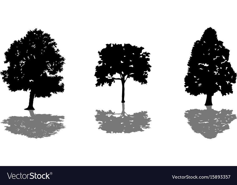 Tree set of black silhouettes with shadow