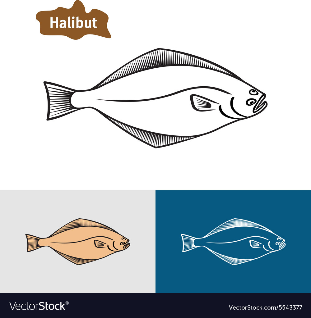 Halibut fish sumple one color silhouette
