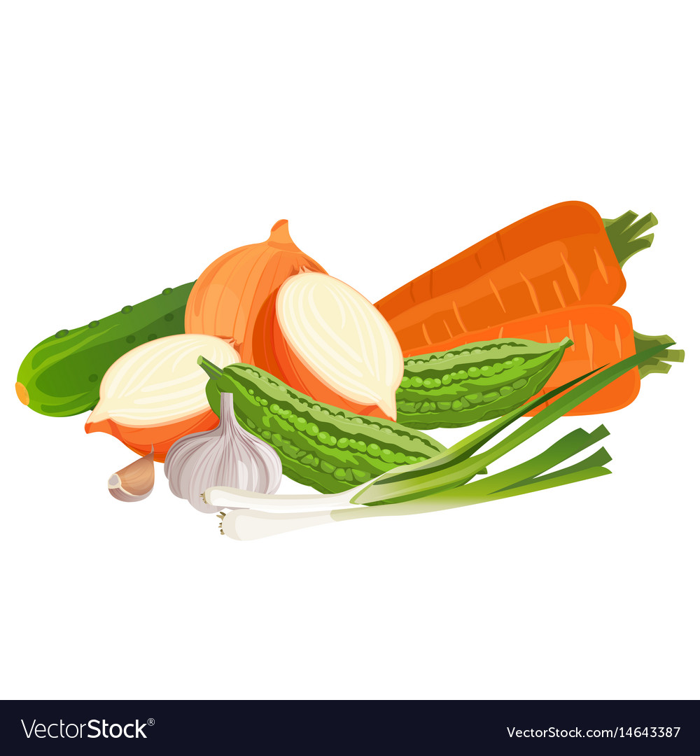 Set of vegetables zucchini two carrots whole and vector image
