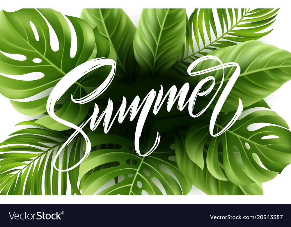 Summer lettering on palm leaf background