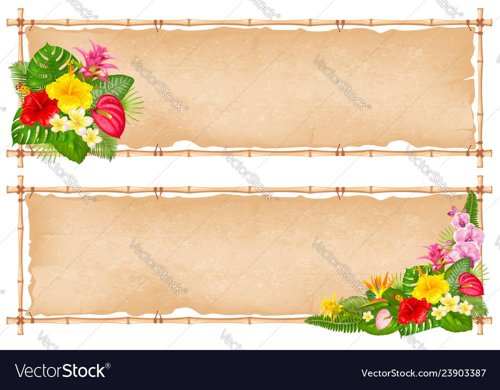 Summer tropical frame design