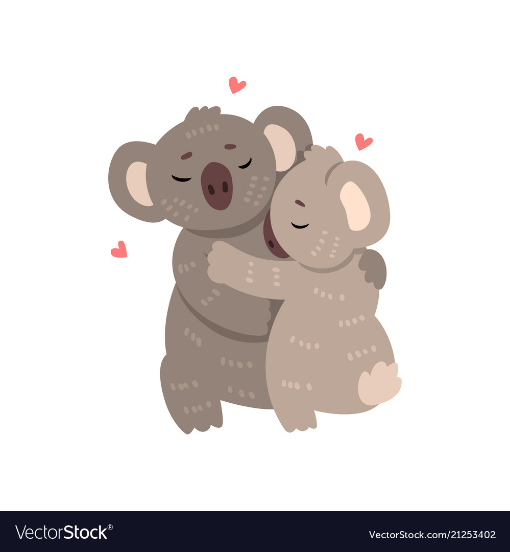 Couple of cute koalas in love embracing each other