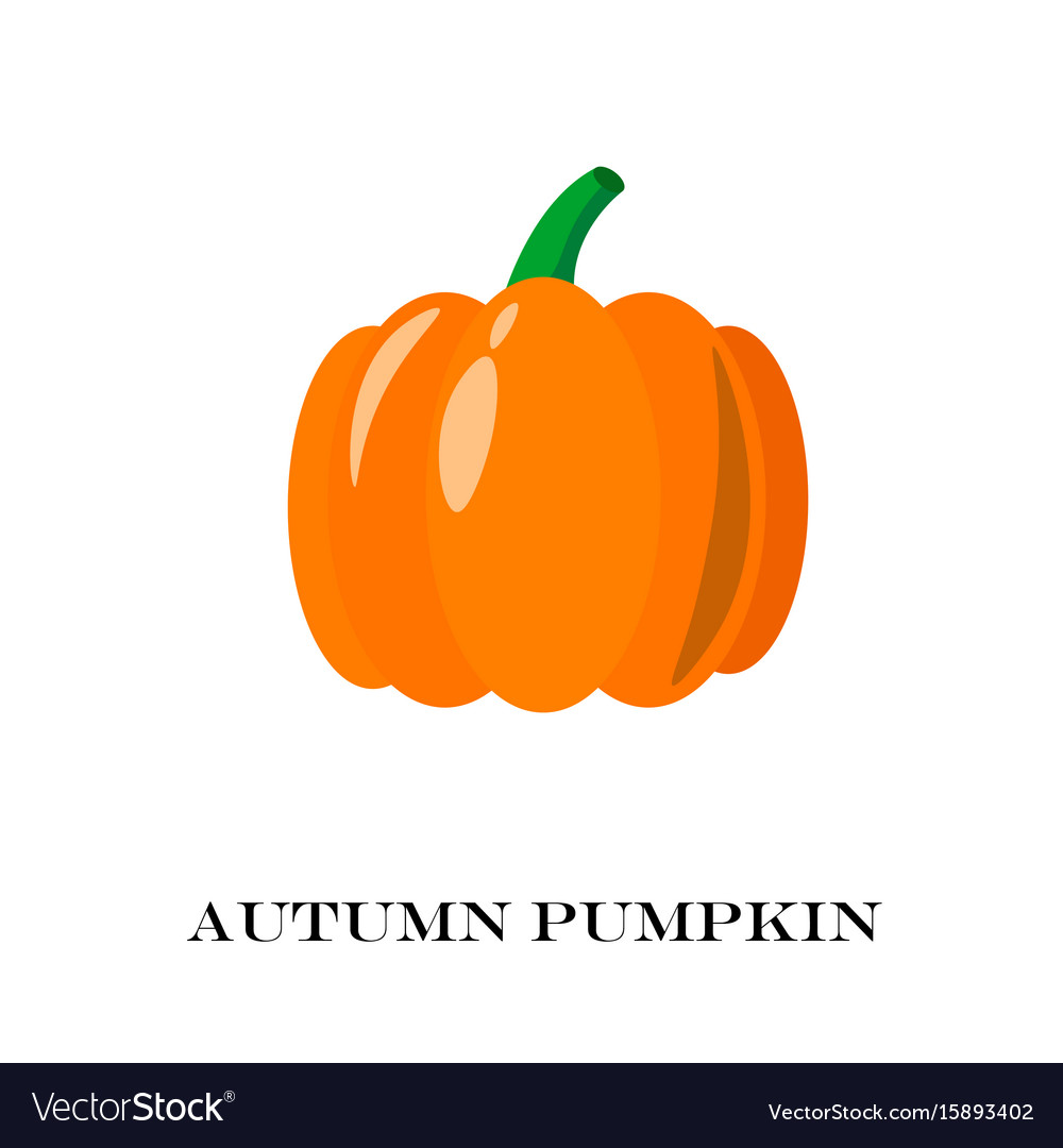 Pumpkin isolated flat and cartoon design style