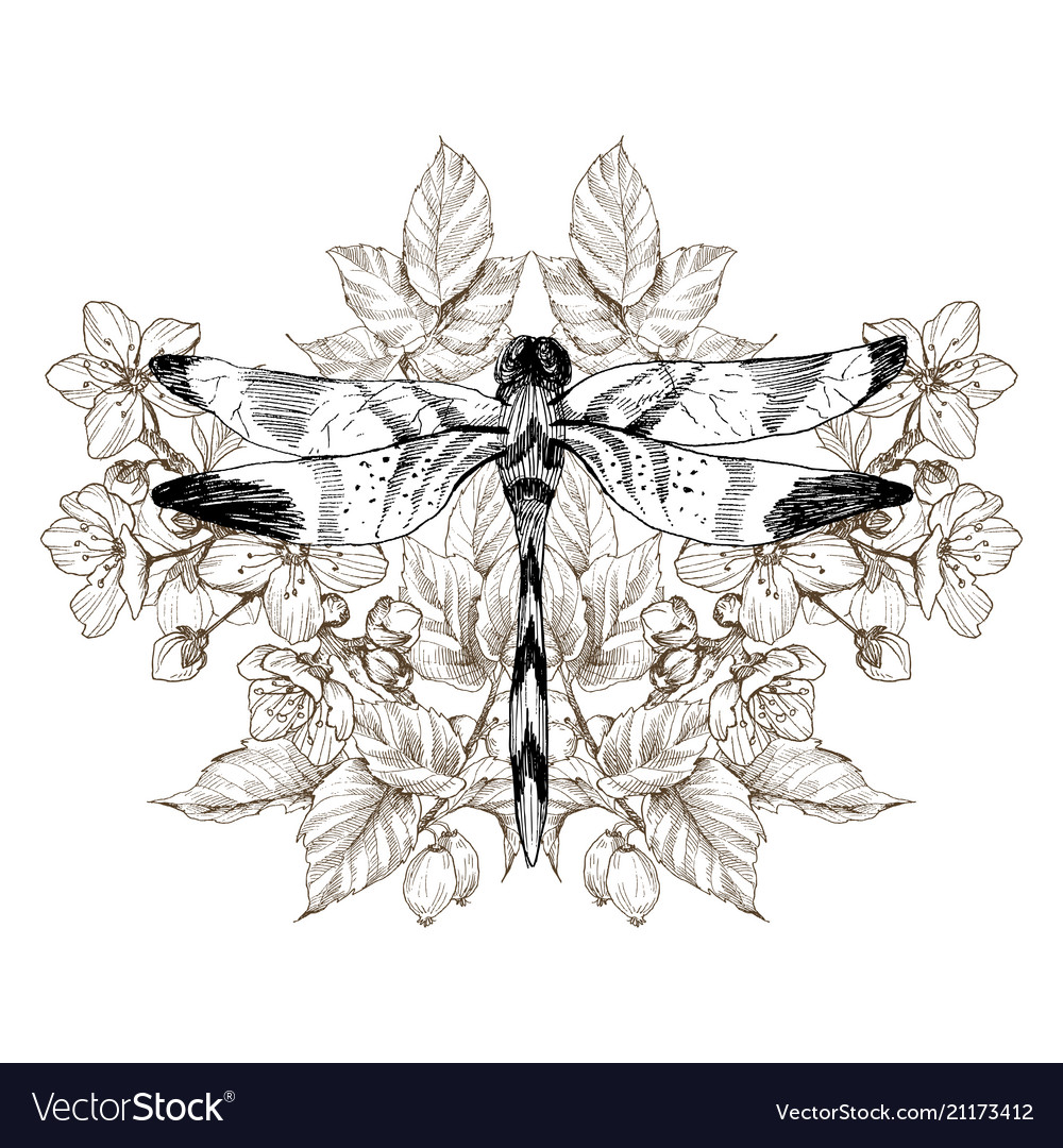 Flowers and dragonfly tattoo in vintage vector image on vectorstock flowers and dragonfly tattoo in vintage vector image izmirmasajfo
