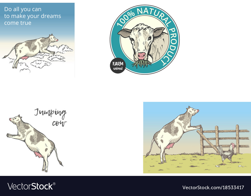 The cow jumped