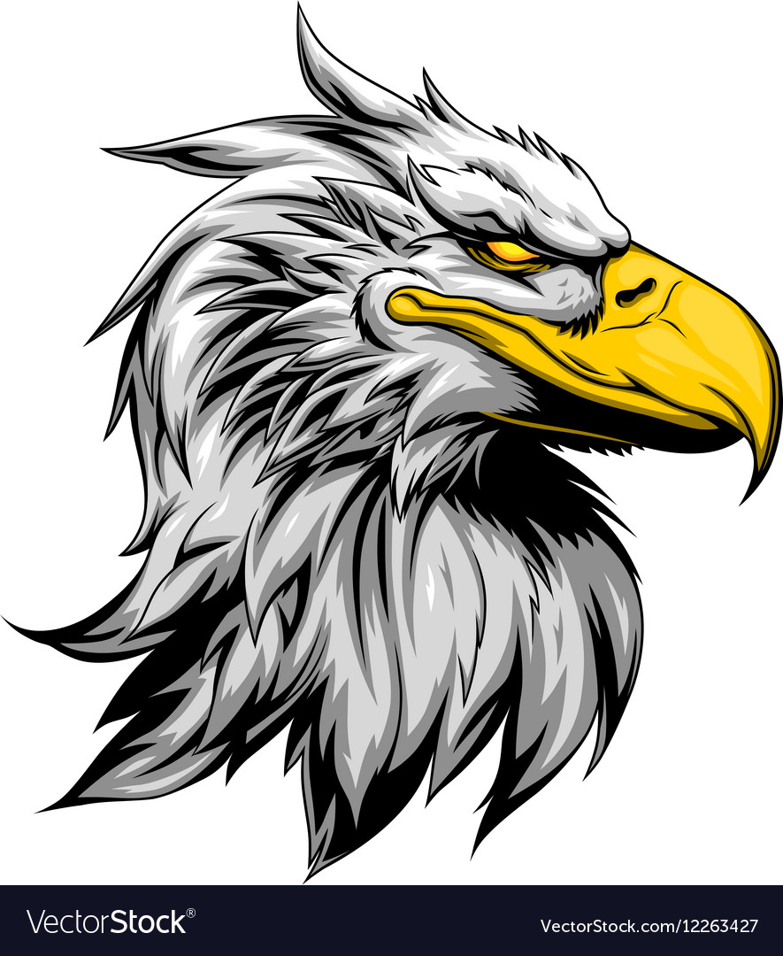 angry eagle head royalty free vector image vectorstock rh vectorstock com Eagle Head Line Art Eagle Head Outline