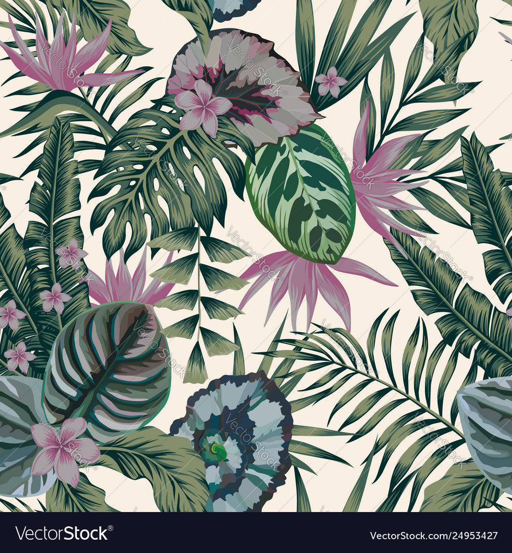 Tropical Plants Leaves Flowers Abstract Color Vector Image