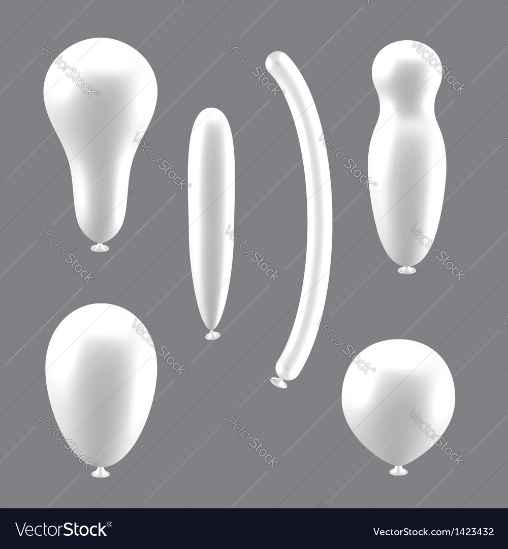 Set of white different types of balloons vector image