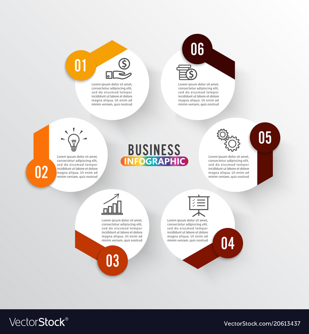 Infographics 6 options template for