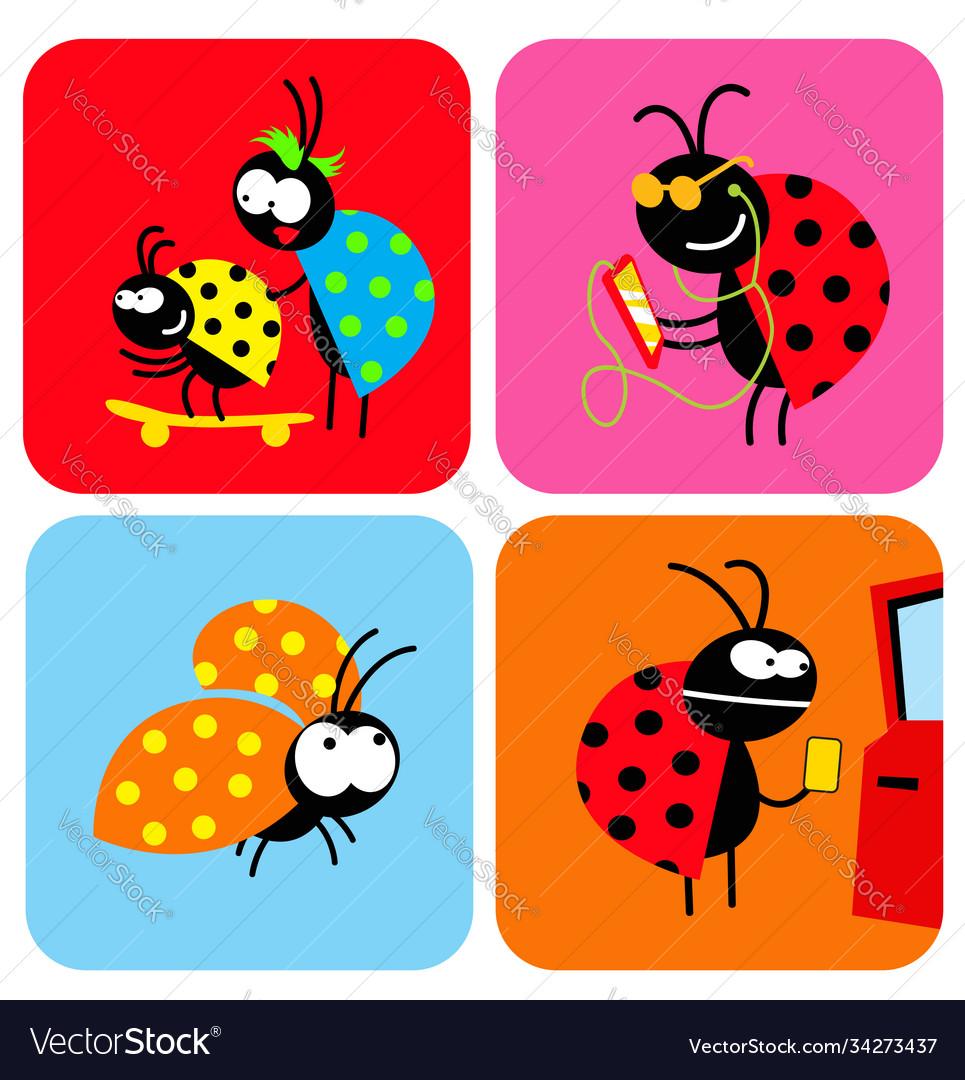 Social life beetles