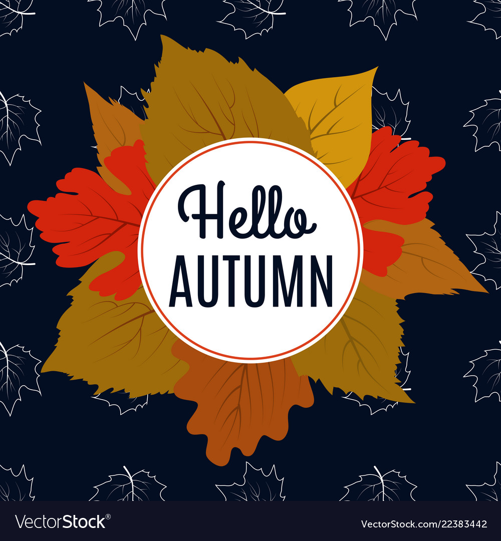 Hello autumn banner with color leaves and maple