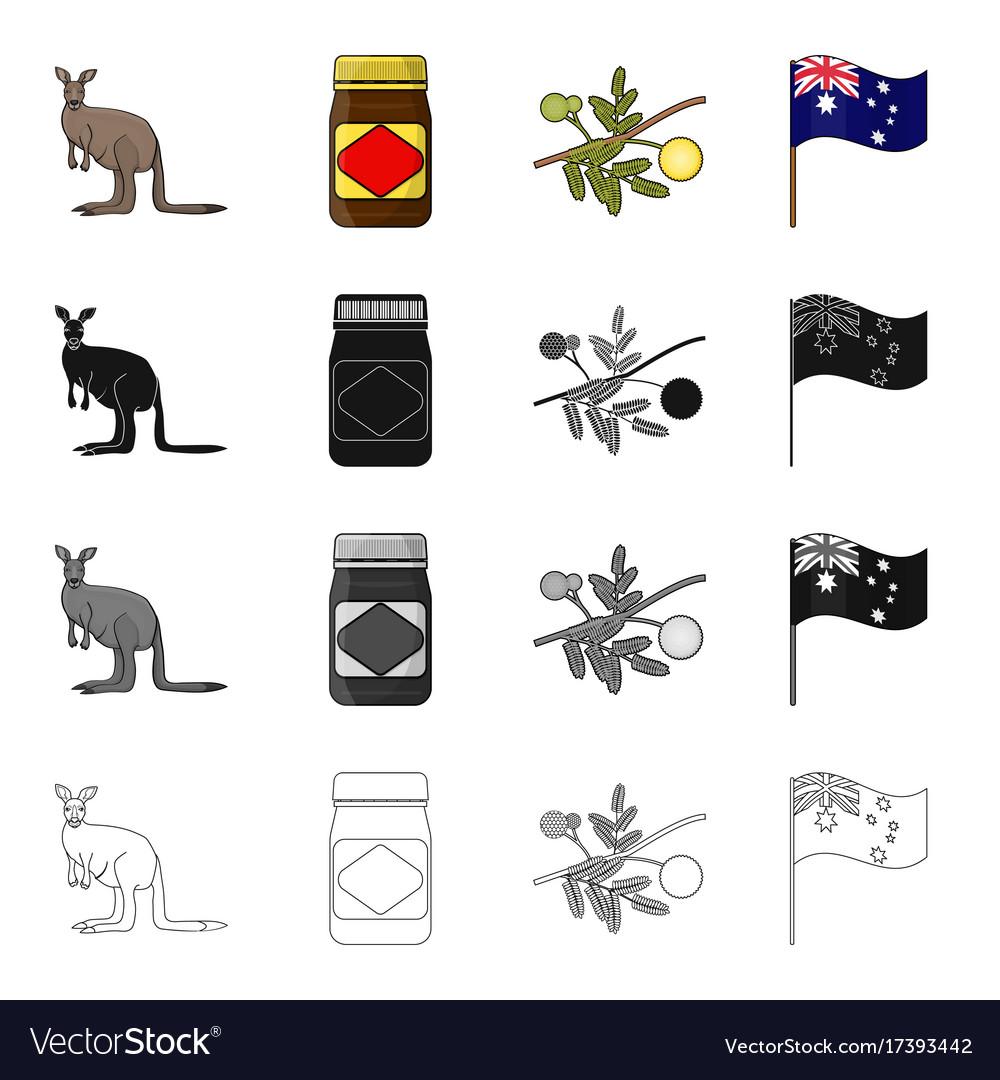 Kangaroo apple sauce chutney australian acacia