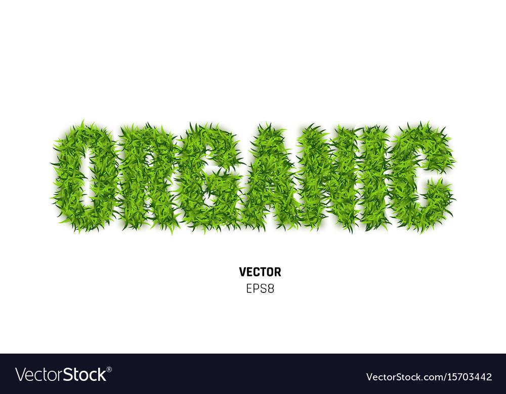 Organic made of green grass